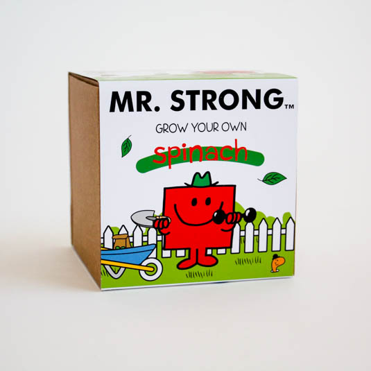 Mr Strong Grow Kit