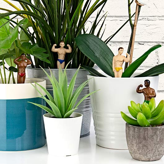 Mini Plant Pot Hunks