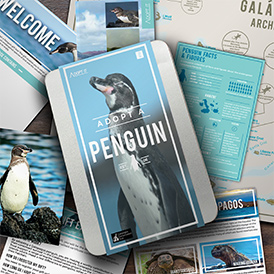 Help to save penguins