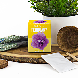 Birth Flowers - February