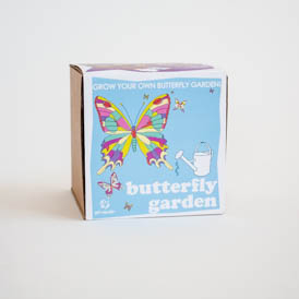Attract butterflies!