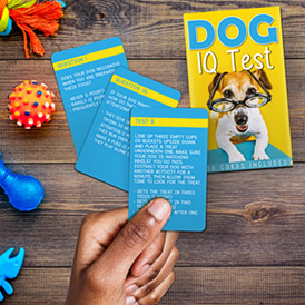 Dog IQ Test