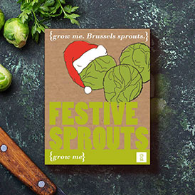 Grow Me: Festive Sprouts