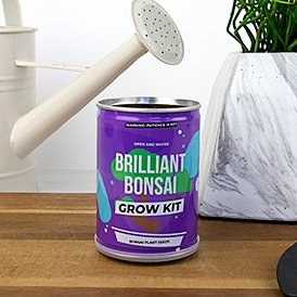 Grow Tin - Brilliant Bonsai