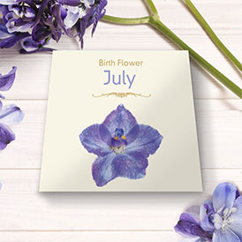 Birth Flowers - July