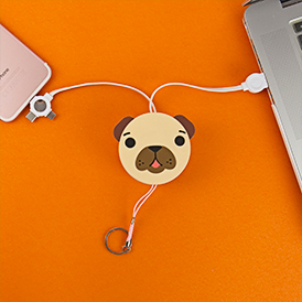Retractable Pug Cable